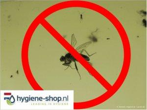 Insectenbestrijding Overzicht: Kleefplaten, Ventilatortechniek, Elektrische Vliegenvangers en UV-Lampen – de Voor- en Nadelen