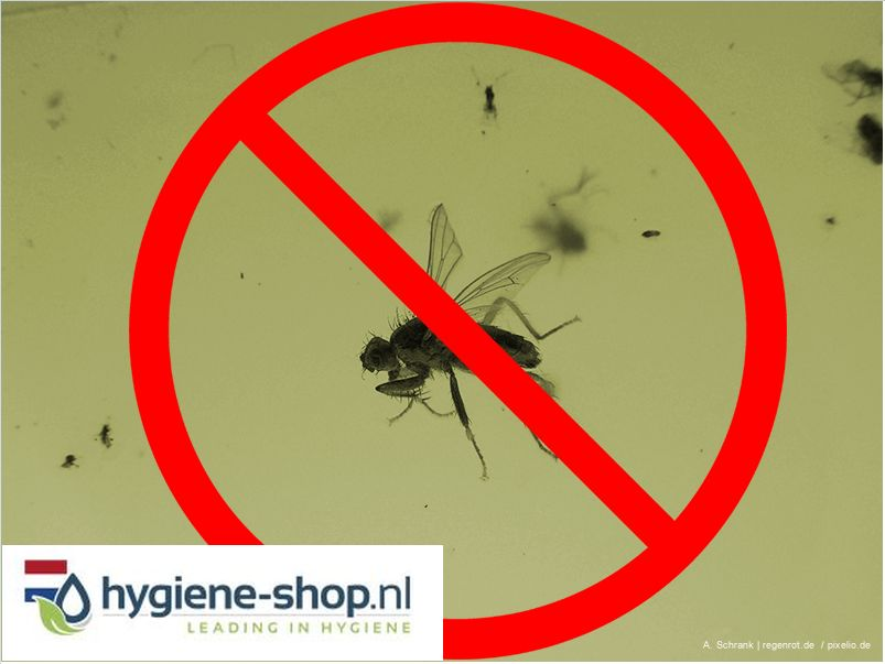 Insectenbestrijding Produkten bij Hygiene-shop.nl online kopen!
