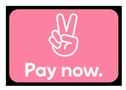 Betalen met Klarna Pay Now direct betalen